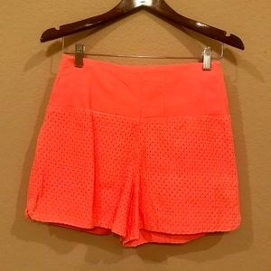 Anthropologie high waisted shorts